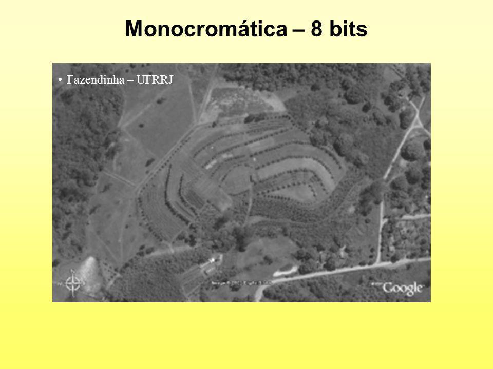 Monocromática – 8 bits Fazendinha – UFRRJ