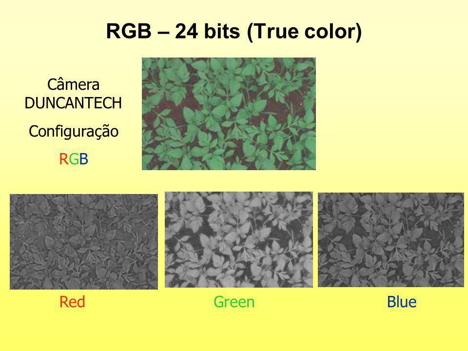 RGB – 24 bits (True color) RedGreenBlue Câmera DUNCANTECH Configuração RGB
