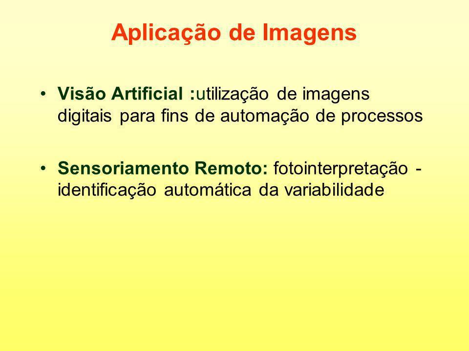 Tipos de imagens Binária: preto e branco Monocromática: tons de cinza Colorida: falso rgb - câmeras comerciais RGB: rgb verdadeiro-true color Color-NIR: falsa cor infravermelho-color infrared