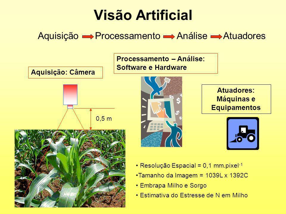 Visão Artificial Aquisição Processamento Análise Atuadores Resolução Espacial = 0,1 mm.pixel -1 Tamanho da Imagem = 1039L x 1392C Embrapa Milho e Sorg