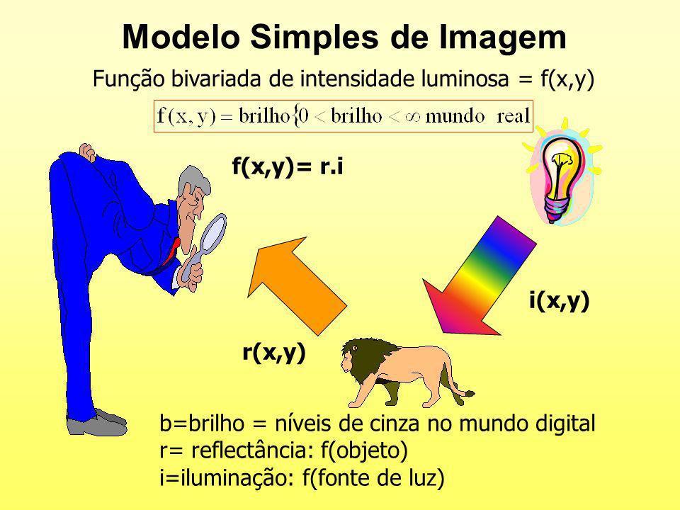 Modelo Simples de Imagem i(x,y) r(x,y) f(x,y)= r.i b=brilho = níveis de cinza no mundo digital r= reflectância: f(objeto) i=iluminação: f(fonte de luz