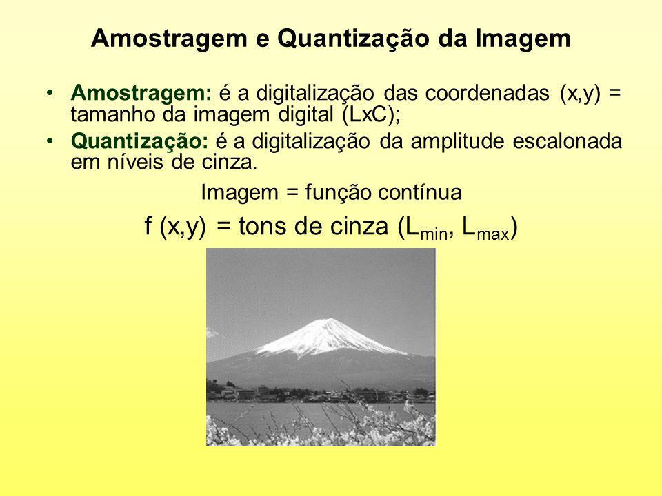 Amostragem e Quantização da Imagem Amostragem: é a digitalização das coordenadas (x,y) = tamanho da imagem digital (LxC); Quantização: é a digitalizaç