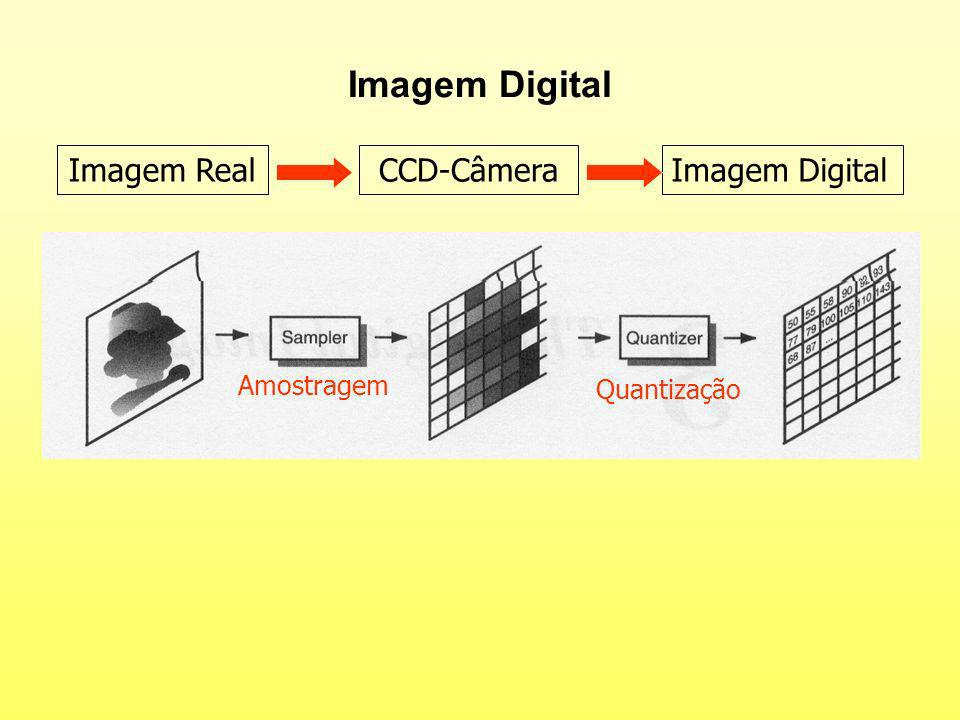 Imagem Digital Imagem RealCCD-CâmeraImagem Digital Amostragem Quantização