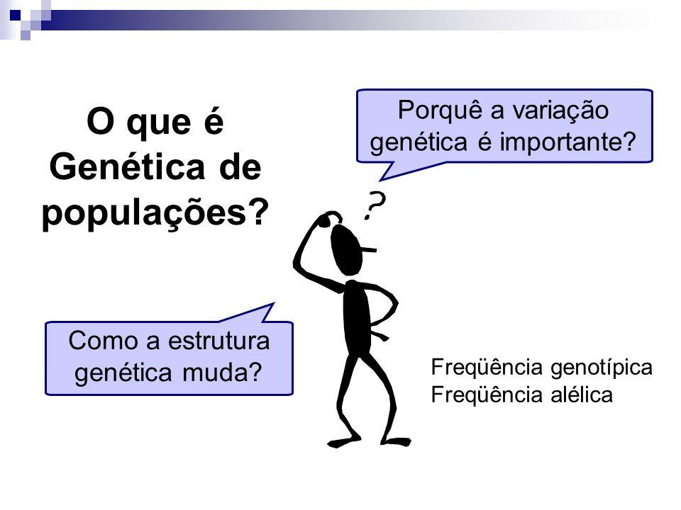 Porquê a variação genética é importante? Como a estrutura genética muda? O que é Genética de populações? Freqüência genotípica Freqüência alélica