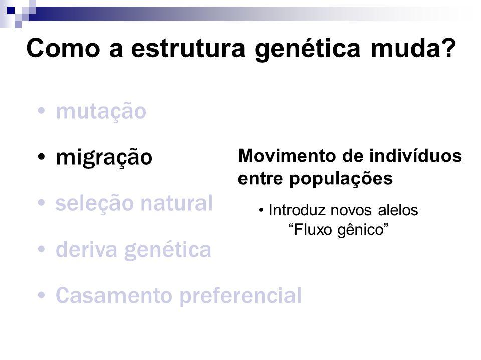 Como a estrutura genética muda? mutação migração seleção natural deriva genética Casamento preferencial Movimento de indivíduos entre populações Intro