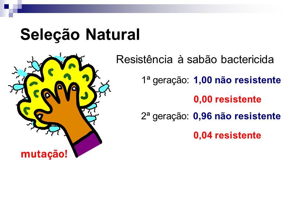 Seleção Natural Resistência à sabão bactericida 1ª geração: 1,00 não resistente 0,00 resistente mutação! 2ª geração: 0,96 não resistente 0,04 resisten