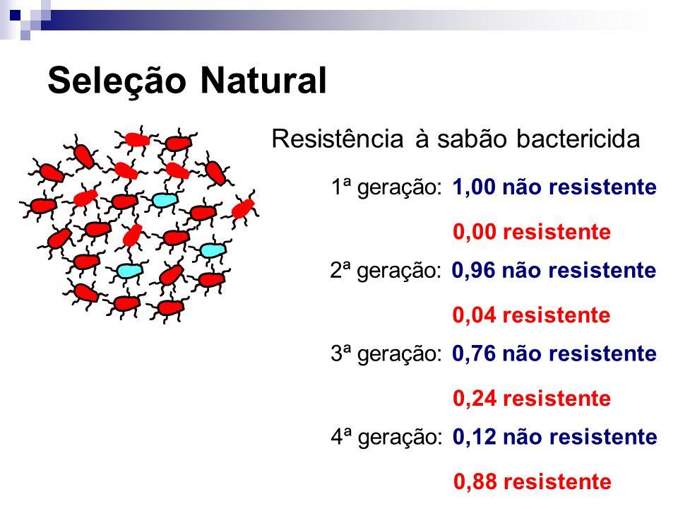 Seleção Natural Resistência à sabão bactericida 1ª geração: 1,00 não resistente 0,00 resistente 2ª geração: 0,96 não resistente 0,04 resistente 3ª ger