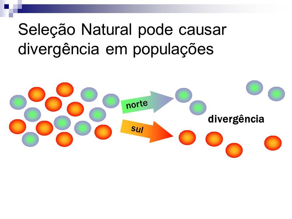 Seleção Natural pode causar divergência em populações divergência norte sul