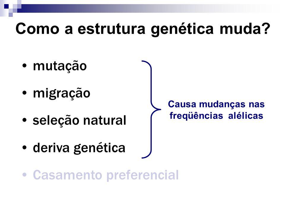 Como a estrutura genética muda? mutação migração seleção natural deriva genética Casamento preferencial Causa mudanças nas freqüências alélicas