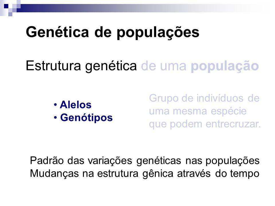 Genética de populações Estrutura genética de uma população Grupo de indivíduos de uma mesma espécie que podem entrecruzar. Alelos Genótipos Padrão das