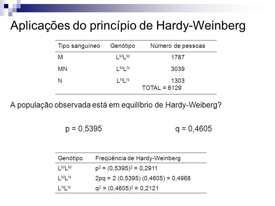 Aplicações do princípio de Hardy-Weinberg Tipo sanguíneoGenótipoNúmero de pessoas MLMLMLMLM 1787 MNLMLNLMLN 3039 NLNLNLNLN 1303 TOTAL = 6129 A populaç
