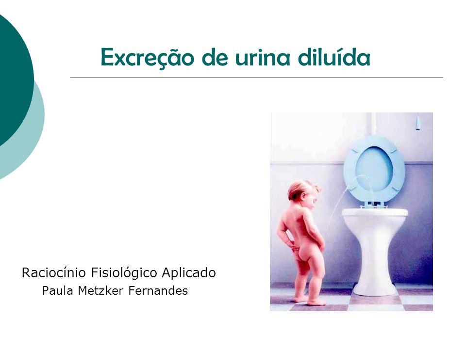 Excreção de urina diluída Raciocínio Fisiológico Aplicado Paula Metzker Fernandes
