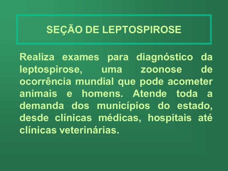 SEÇÃO DE HANSENÍASE Realiza bacterioscopias para o diagnóstico e controle da Hanseníase, atendendo a demanda da Dermatologia Sanitária da Policlínica