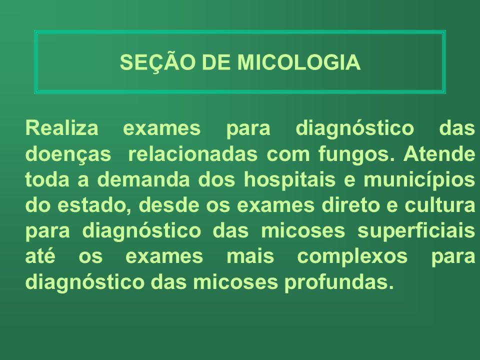 SEÇÃO DE LEPTOSPIROSE Realiza exames para diagnóstico da leptospirose, uma zoonose de ocorrência mundial que pode acometer animais e homens. Atende to