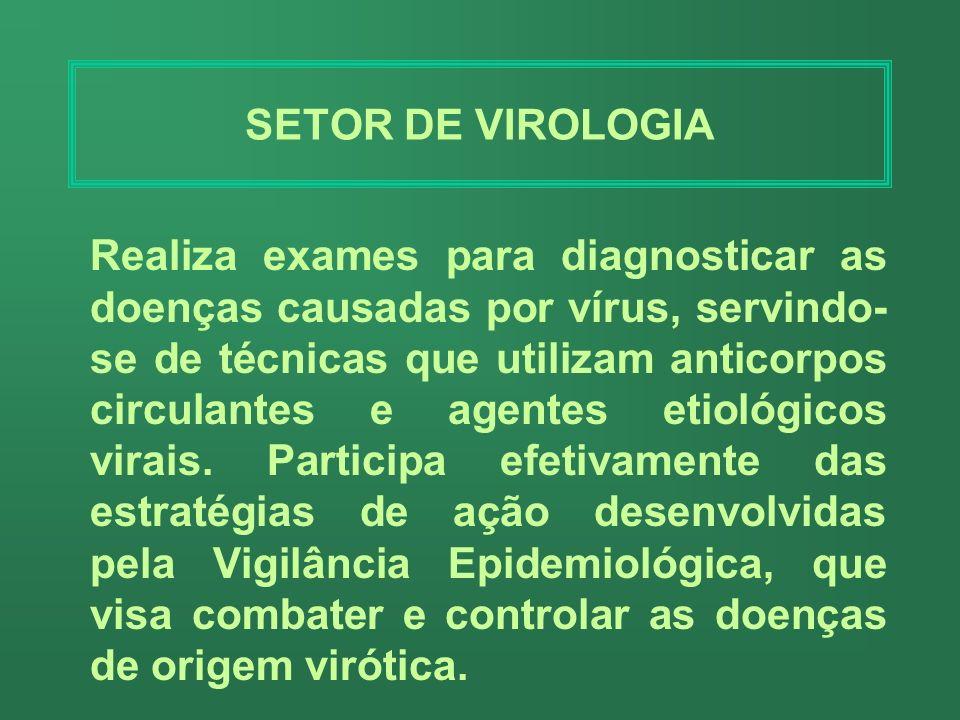 SEÇÃO DE TUBERCULOSE Realiza o diagnóstico e controle laboratorial da tuberculose através da baciloscopia, cultura e teste de sensibilidade.