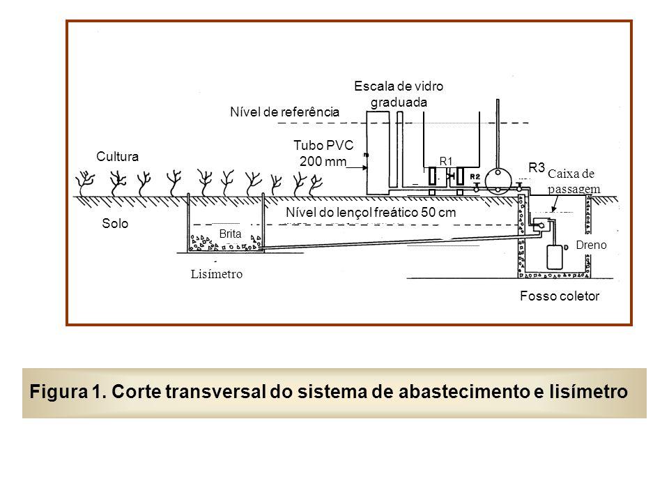 Figura 1. Corte transversal do sistema de abastecimento e lisímetro Escala de vidro graduada Lisímetro Nível de referência Tubo PVC 200 mm Brita Nível