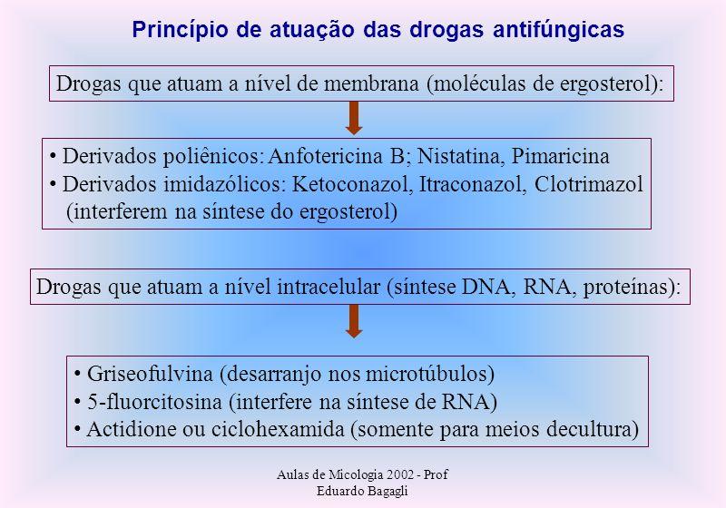 Aulas de Micologia 2002 - Prof Eduardo Bagagli Drogas que atuam a nível de membrana (moléculas de ergosterol): Derivados poliênicos: Anfotericina B; N