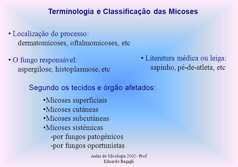 Aulas de Micologia 2002 - Prof Eduardo Bagagli Terminologia e Classificação das Micoses Localização do processo: dermatomicoses, oftalmomicoses, etc O