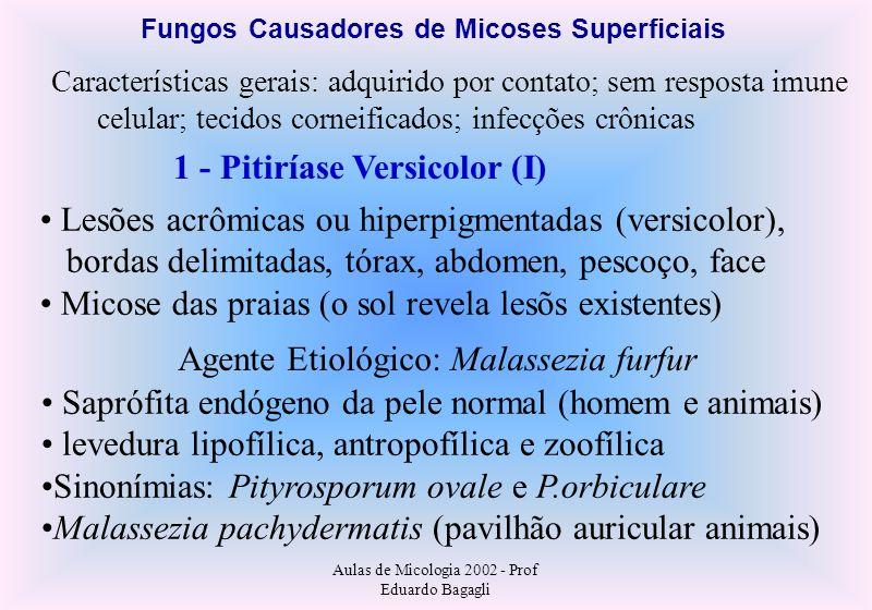 Aulas de Micologia 2002 - Prof Eduardo Bagagli Fungos Causadores de Micoses Superficiais Características gerais: adquirido por contato; sem resposta i