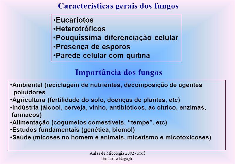Aulas de Micologia 2002 - Prof Eduardo Bagagli Cromoblastomicose Etiologia Várias espécies de fungos Família Dematiaceae (produzem pigmentos) Principais: Phialophora verrucosa Fonsecaea pedrosoi F.