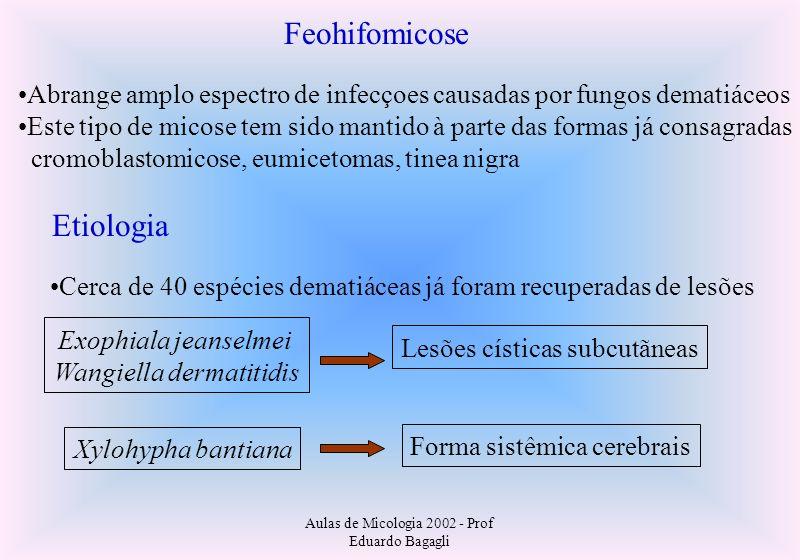 Aulas de Micologia 2002 - Prof Eduardo Bagagli Feohifomicose Abrange amplo espectro de infecçoes causadas por fungos dematiáceos Este tipo de micose t
