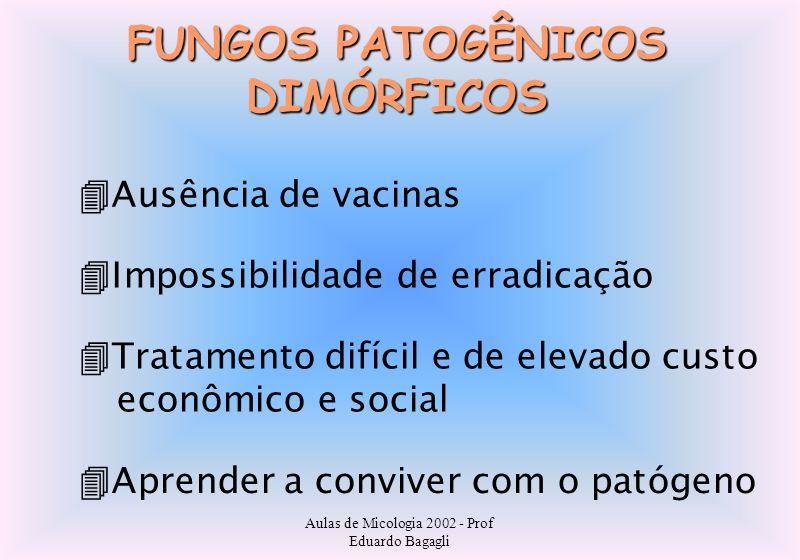 Aulas de Micologia 2002 - Prof Eduardo Bagagli FUNGOS PATOGÊNICOS DIMÓRFICOS Ausência de vacinas Impossibilidade de erradicação Aprender a conviver co