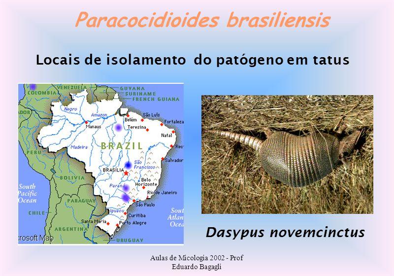 Aulas de Micologia 2002 - Prof Eduardo Bagagli Paracocidioides brasiliensis Locais de isolamento do patógeno em tatus Dasypus novemcinctus