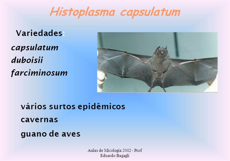 Aulas de Micologia 2002 - Prof Eduardo Bagagli Histoplasma capsulatum Variedades: capsulatum duboisii farciminosum vários surtos epidêmicos cavernas g