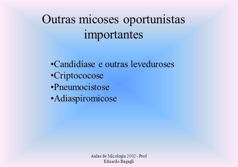 Aulas de Micologia 2002 - Prof Eduardo Bagagli Outras micoses oportunistas importantes Candidíase e outras leveduroses Criptococose Pneumocistose Adia
