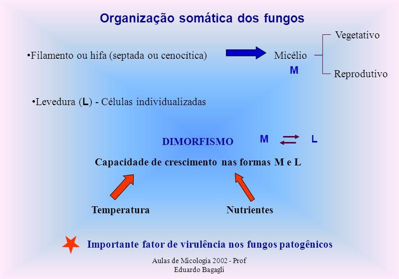 Aulas de Micologia 2002 - Prof Eduardo Bagagli Diagnóstico Microbiológico das Micoses I Exame microscópico (micromorfologia parasitária): Direto (raspado, secreções, escarro, etc) -clareamento com KOH 10-20% Direto com coloração (Giemsa, Nanquim, Gram, etc) Histopatologia (biópsia), coloração: HE (Hematoxilina Eosina) PAS (Periodic Acid-Schiff) GMS (Gomori Methenamine Silver Isolamento fúngico Meios de cultura como Ágar Sabouraud, adicionados ou não de antibióticos bacterianos e antifúngicos (actidione) O resultado da cutura pode demorar semanas e até meses