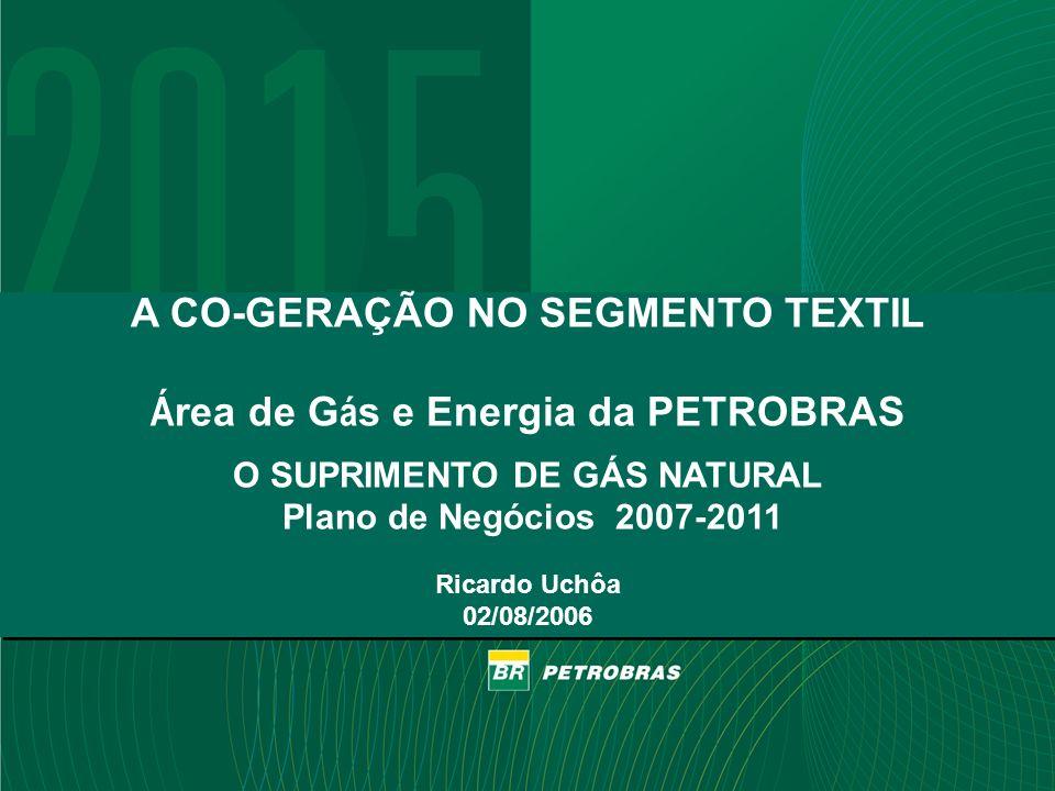 Confidencial PETROBRAS 1 1 A CO-GERAÇÃO NO SEGMENTO TEXTIL Á rea de G á s e Energia da PETROBRAS O SUPRIMENTO DE GÁS NATURAL Plano de Negócios 2007-20