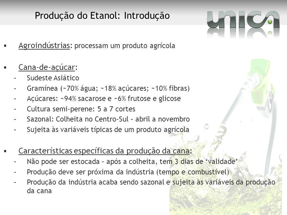 Produção do Etanol: Introdução Agroindústrias: processam um produto agrícola Cana-de-açúcar: –Sudeste Asiático –Gramínea (~70% água; ~18% açúcares; ~1