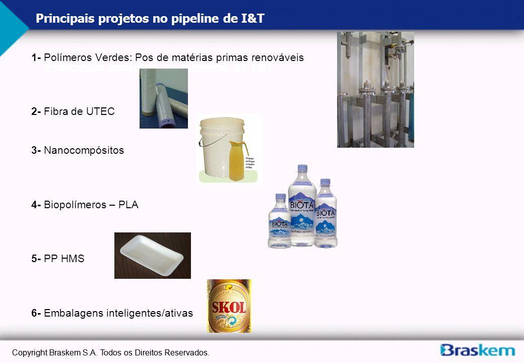 Principais projetos no pipeline de I&T 1- Polímeros Verdes: Pos de matérias primas renováveis 2- Fibra de UTEC 3- Nanocompósitos 4- Biopolímeros – PLA