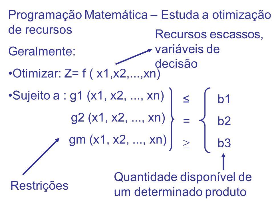 Programação Matemática – Estuda a otimização de recursos Geralmente: Otimizar: Z= f ( x1,x2,...,xn) Sujeito a : g1 (x1, x2,..., xn) g2 (x1, x2,..., xn