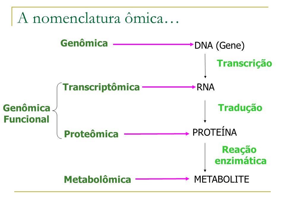 O que é Proteômica? Identificação, caracterização e quantificação de todas as proteínas envolvidas em uma cadeia particular, organela, célula, tecido,