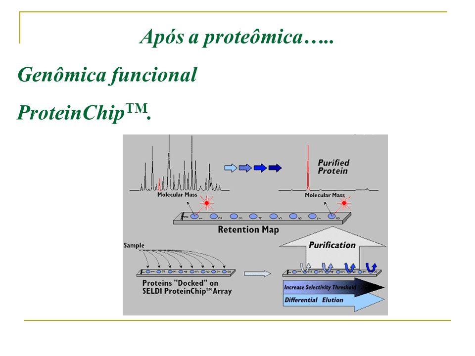 Vantagens vs. Desvantagens Determinação de peso molecular e sequencia de aa. Detecção de modificações pós- transcricionais Alta confiabilidade Alto cu