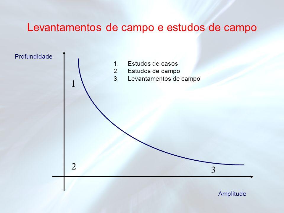 1 2 3 1.Estudos de casos 2.Estudos de campo 3.Levantamentos de campo Profundidade Amplitude