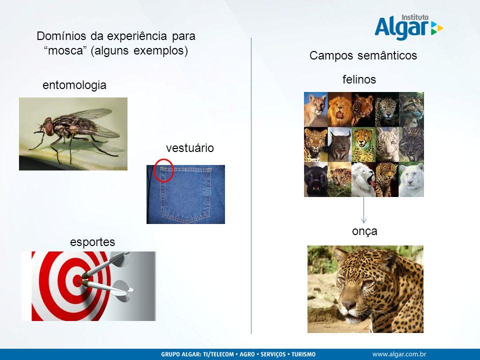 felinos Domínios da experiência para mosca (alguns exemplos) entomologia vestuário esportes onça Campos semânticos