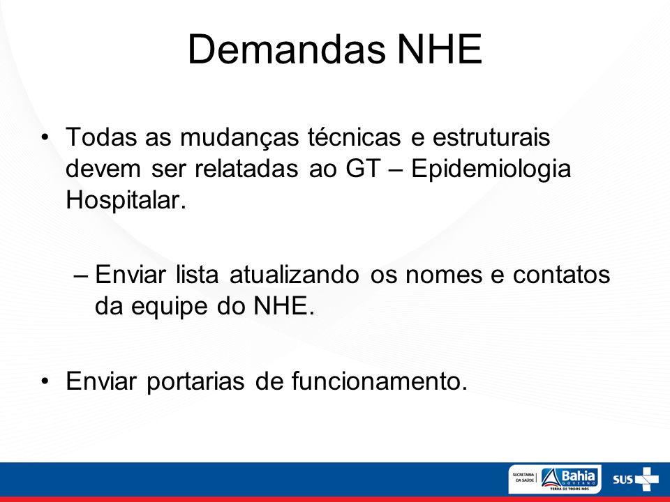 Demandas NHE Todas as mudanças técnicas e estruturais devem ser relatadas ao GT – Epidemiologia Hospitalar. –Enviar lista atualizando os nomes e conta