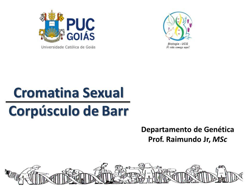 Cromatina Sexual Corpúsculo de Barr Departamento de Genética Prof. Raimundo Jr, MSc