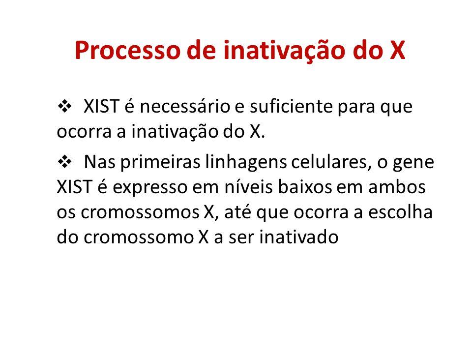 Processo de inativação do X XIST é necessário e suficiente para que ocorra a inativação do X. Nas primeiras linhagens celulares, o gene XIST é express