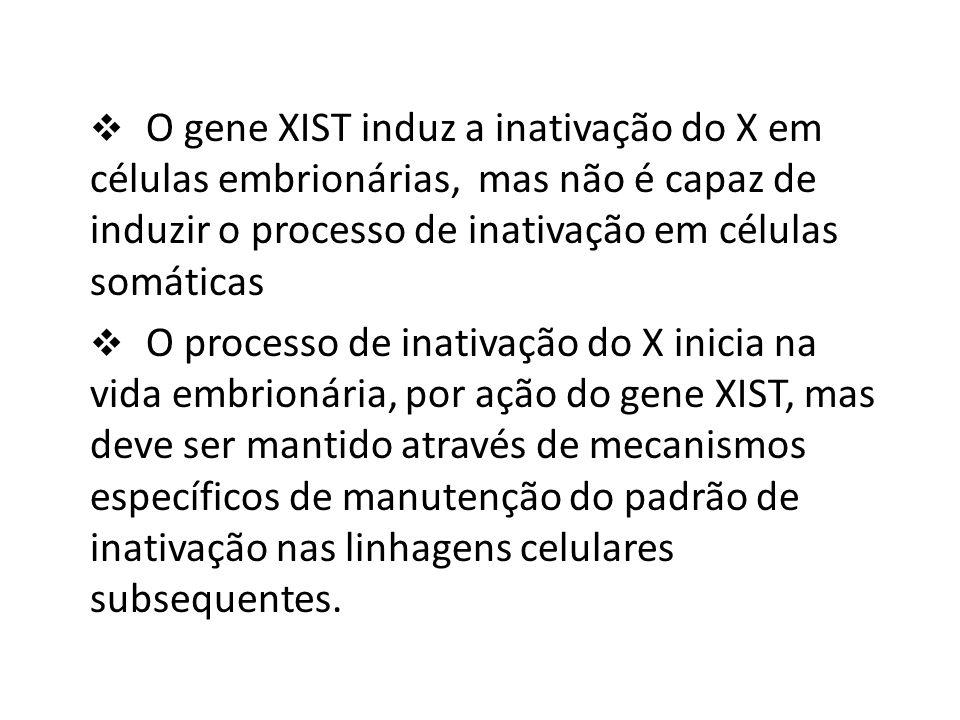 O gene XIST induz a inativação do X em células embrionárias, mas não é capaz de induzir o processo de inativação em células somáticas O processo de in