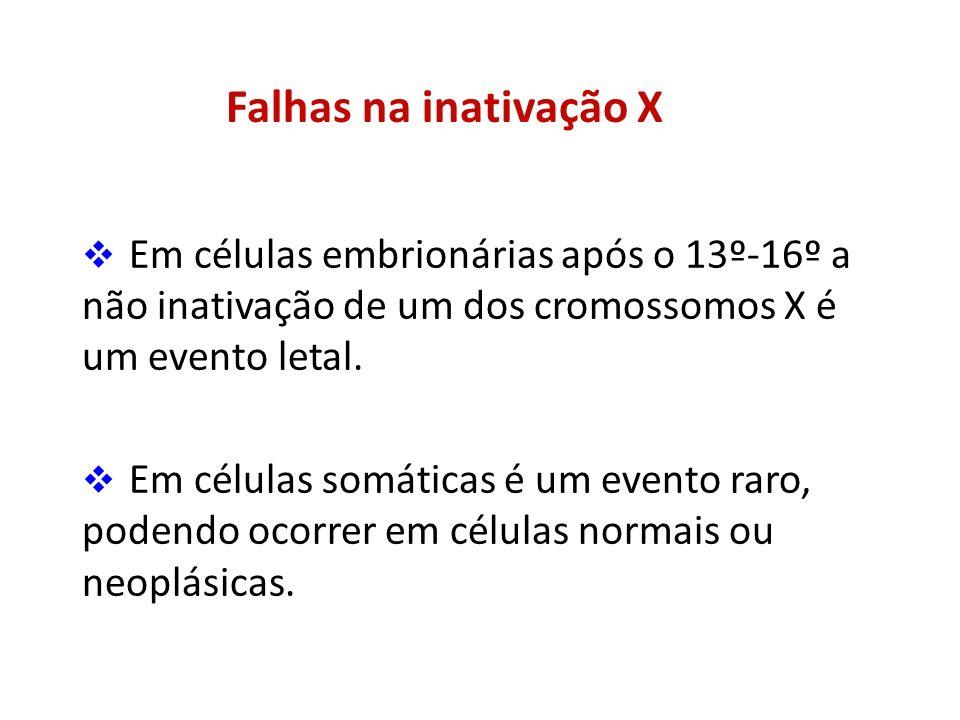 Falhas na inativação X Em células embrionárias após o 13º-16º a não inativação de um dos cromossomos X é um evento letal. Em células somáticas é um ev