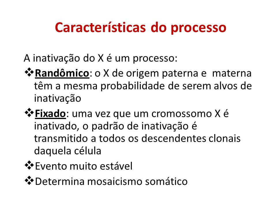 Características do processo A inativação do X é um processo: Randômico: o X de origem paterna e materna têm a mesma probabilidade de serem alvos de in