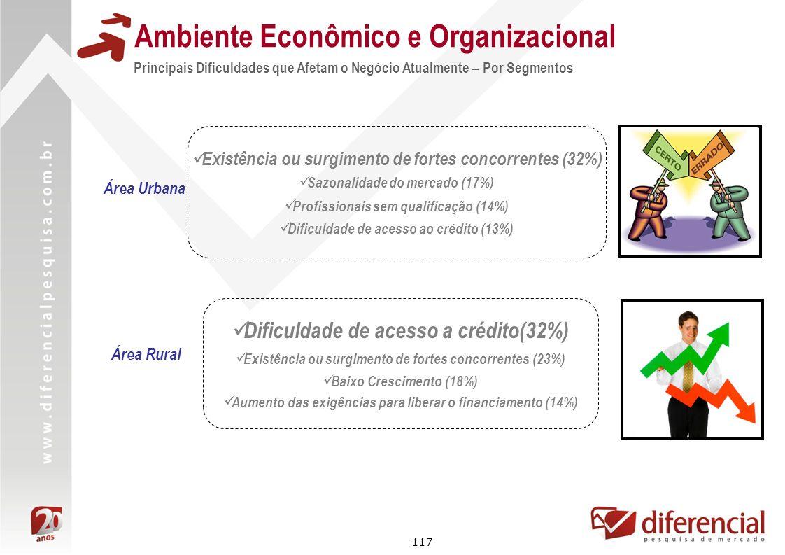 117 Principais Dificuldades que Afetam o Negócio Atualmente – Por Segmentos Ambiente Econômico e Organizacional Área Rural Área Urbana Existência ou s