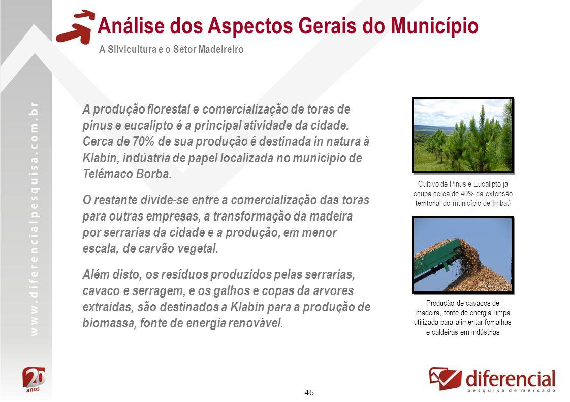 46 Análise dos Aspectos Gerais do Município A Silvicultura e o Setor Madeireiro A produção florestal e comercialização de toras de pinus e eucalipto é