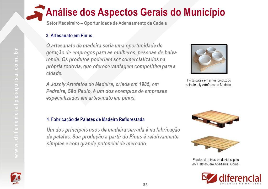 53 Análise dos Aspectos Gerais do Município Setor Madeireiro – Oportunidade de Adensamento da Cadeia O artesanato de madeira seria uma oportunidade de