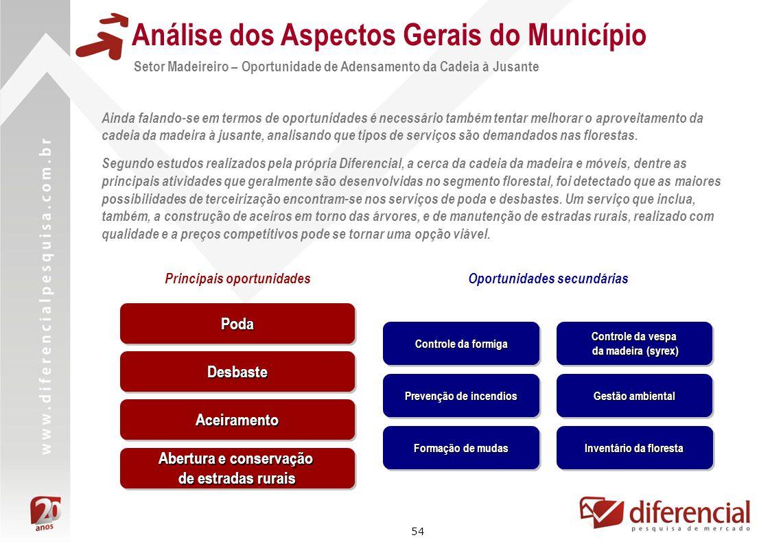54 Análise dos Aspectos Gerais do Município Setor Madeireiro – Oportunidade de Adensamento da Cadeia à Jusante Ainda falando-se em termos de oportunid