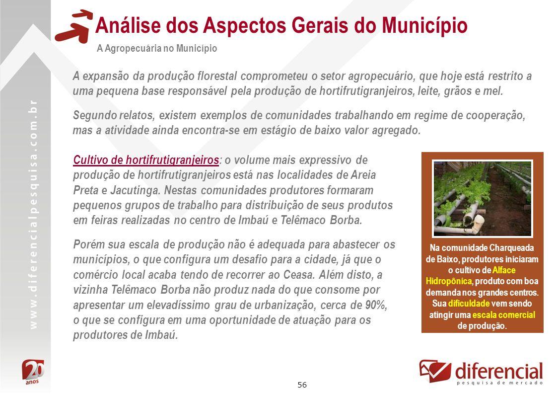 56 Análise dos Aspectos Gerais do Município A Agropecuária no Município Na comunidade Charqueada de Baixo, produtores iniciaram o cultivo de Alface Hi
