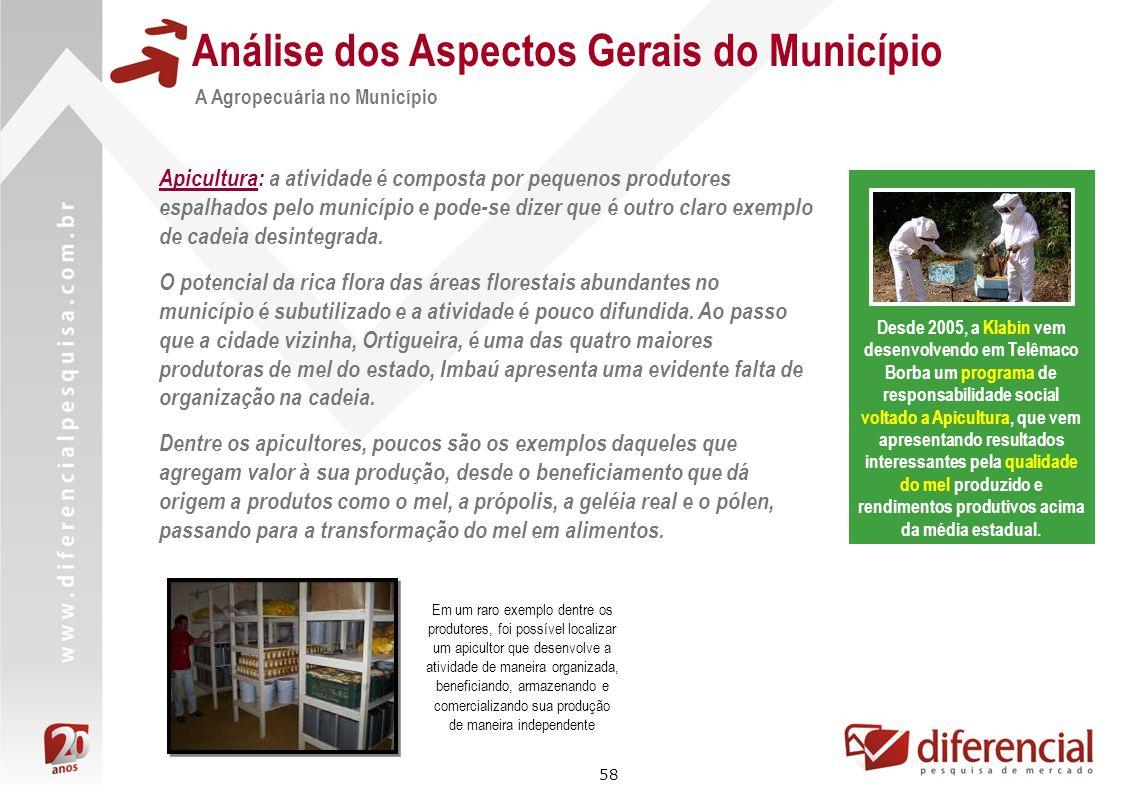 58 Análise dos Aspectos Gerais do Município A Agropecuária no Município Apicultura: a atividade é composta por pequenos produtores espalhados pelo mun